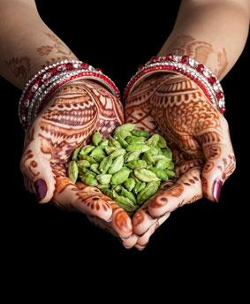 Ayurveda für Senioren